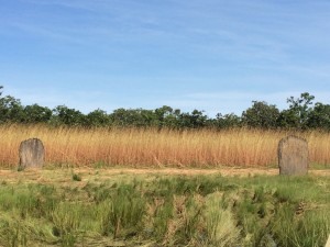 North-South Termite Mounds